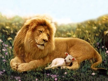 The Lion ~ And The Lamb.