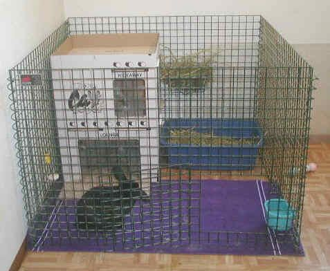 X-Pen Living Can Improve Your Rabbit's Life | San Diego House Rabbit Society – lots of different bunny crates for indoor bunners