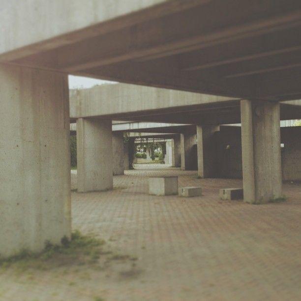 .@andrewvonrose   #montreal concrete