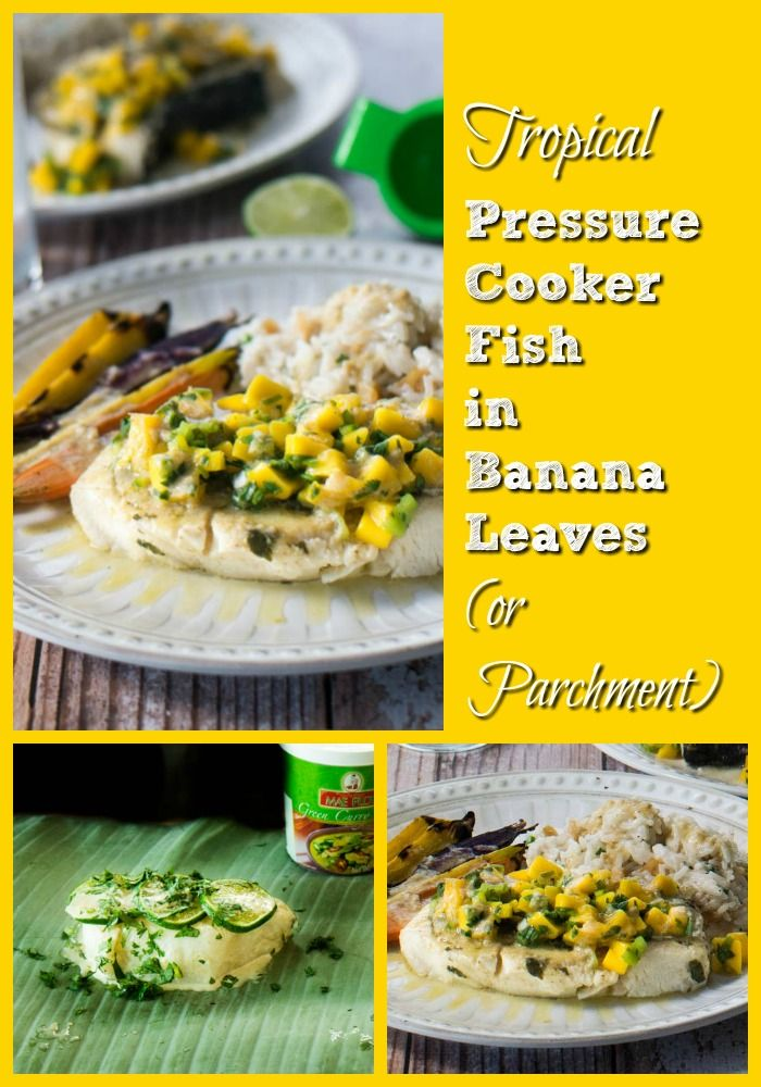 Tropical Pressure Cooker Fish - Thai curry with coconut milk marinade and sauce for firm, white fish cooks in 10 minutes in the pressure cooker! Top with fresh mango salsa...