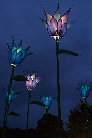 Illuminated tulip garden structures -- gorgeous!