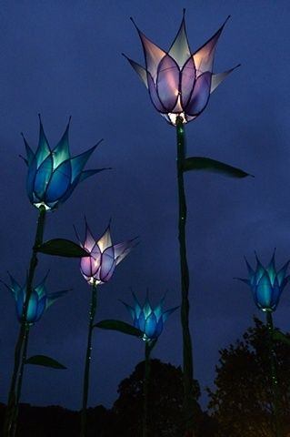 Illuminated tulip garden structures — gorgeous inspiration for a flower tattoo idea w/ Tink