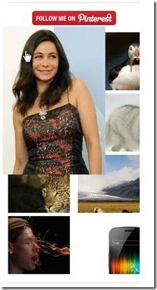 Widget delle Immagini degli Ultimi Pin su Pinterest per Blogger.