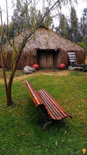 Ruca, casa típica, mapuche.