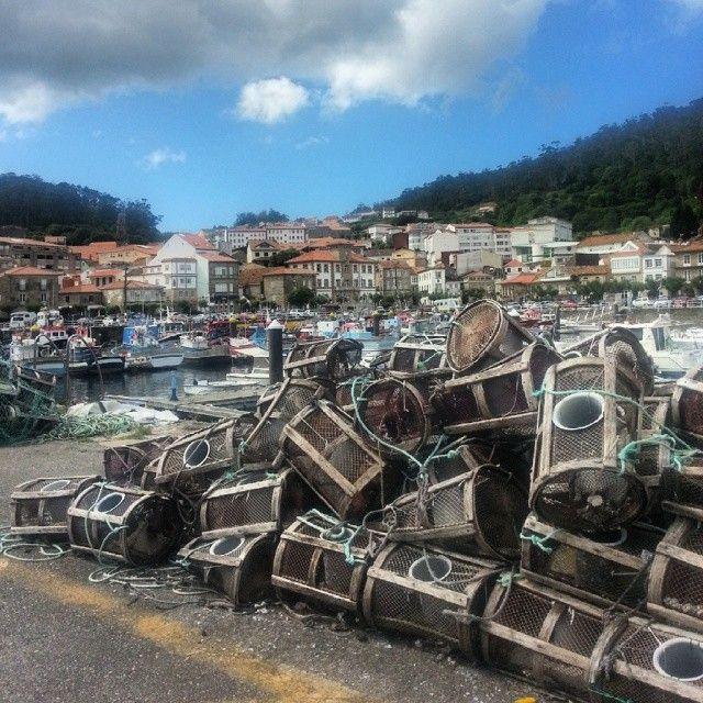 #fishing #octopus #pulpo #nasa #port #sea #shore #nature #blueskies #españa #galicia #puerto #barcos #nasas #pulpo #seafood #spain #españa #riademuros #muros #barche #pesca
