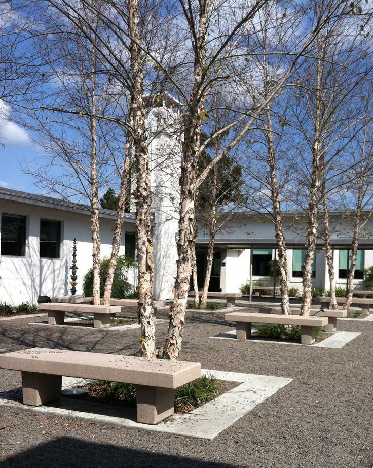 31 best crealde school of art images on pinterest winter park sculpture garden and conservatory for Winter garden recreation center