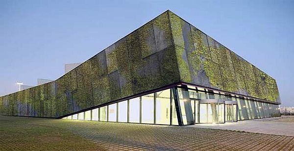 Concreto biológico: hacia una arquitectura sustentable | Planeta Diseño