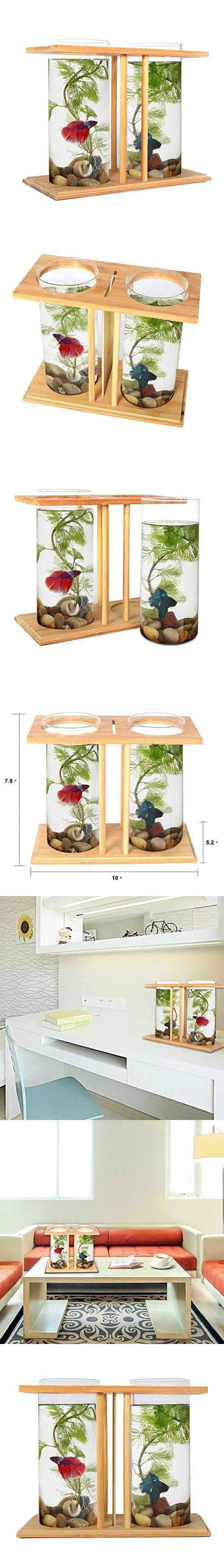 Fish Bowls Bamboo,Segarty Unique Cool Design Small Square Glass Vase  Creative Aquarium Kit With