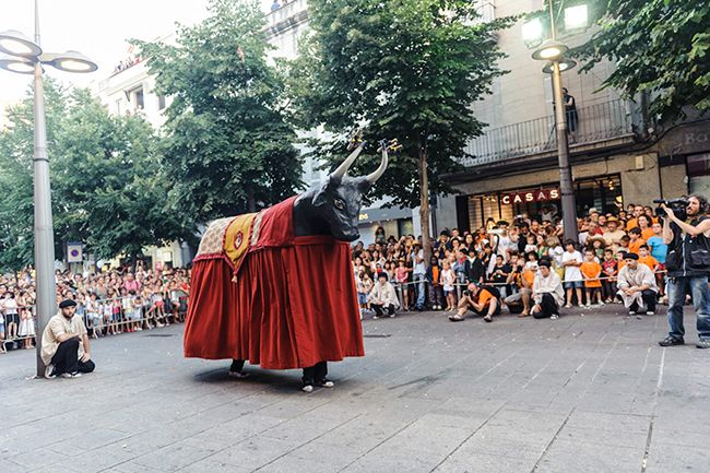 La Momerota - Productes - Festiari
