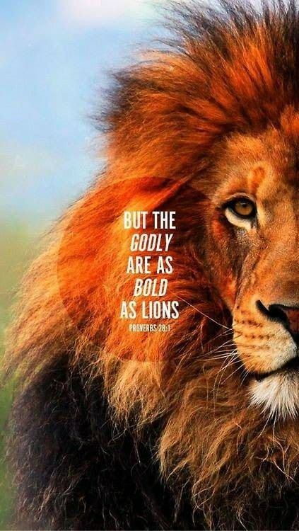 Be Bold with your life. I am Calling on my inner Lioness this AM. Time to make things happen.   #northnodeinleo #king #queen
