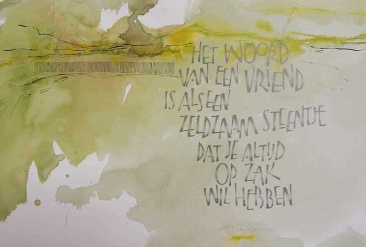 Zeldzaam steentje - André Ooms 2015