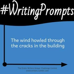 #WritingPrompts for #EroticWriters: The wind howled through the cracks in the building (#Session8:D3)  Participate here: http://eroticwriters.tumblr.com/post/113260441661/writingprompts-s8d3