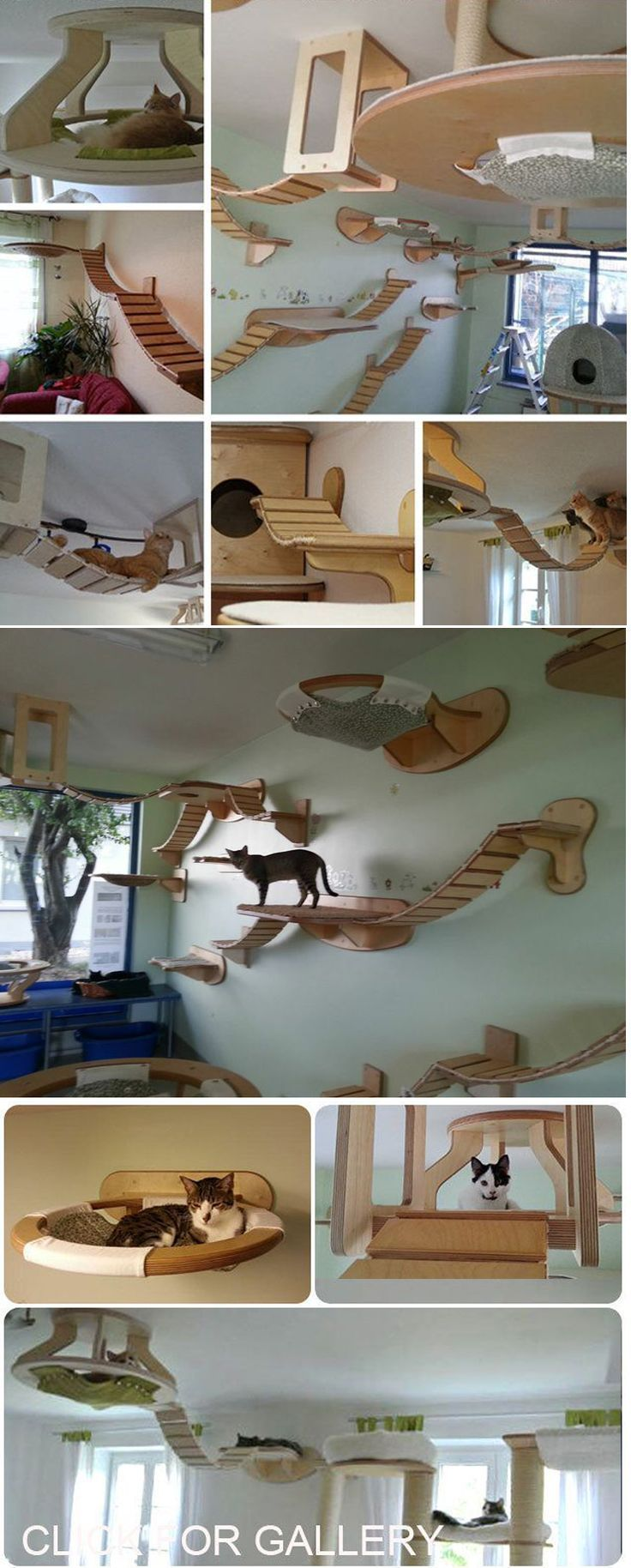 7 best katzenwand images on pinterest cat climbing wall cute kittens and cat houses. Black Bedroom Furniture Sets. Home Design Ideas