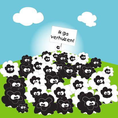 Mo Card - grappige verhuiskaarten met schapen!