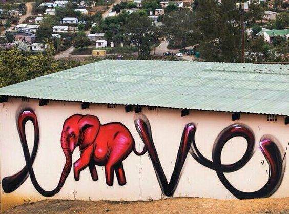 Falko 1, South Africa, 2016