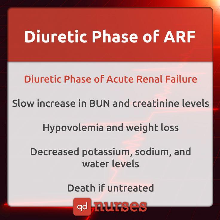 Diuretic Phase of ARF