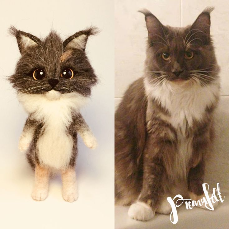 Felted cat, handmade kittens, custom orders #needlefeltedanimals #softsculpture  #handmade #fiberart #cutemouse #realisticanimal #catkitten #bunny #cat #bunnies #merinowool #miniaturefigurine #animalsculpture #handmadefigurine #wool #easter #valentinesday #handmadeanimal #feltdoll #happyanimals #mouse #creative #fox #needlefeltedfigurine #woodlandcreatures #giftforanimallovers  #giftfornaturelovers #woolanimal