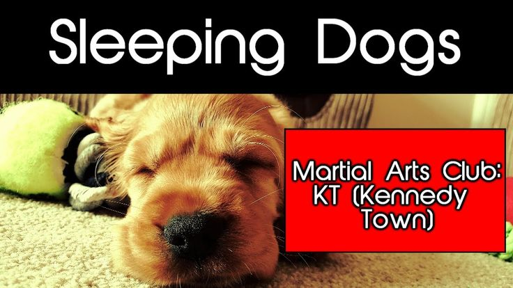 Sleeping Dogs (PS4): Martial Arts Club: KT / No pain no gain!