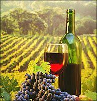 nemeapress: Γιορτή Κρασιού στην Αρχαία Νεμέα την Κυριακή 28 Αυ...