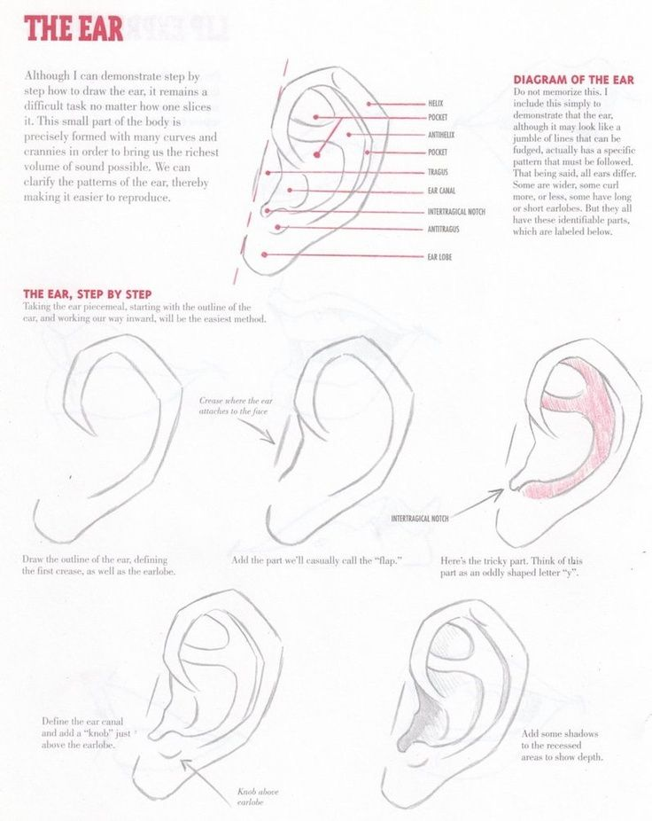 25 best images about ppl  ears on pinterest