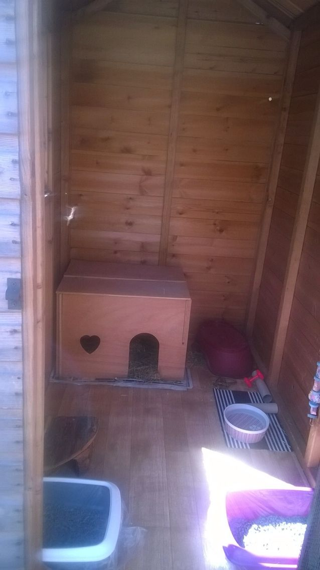 Garden shed rabbit house by Dawn Snowball. 6x4ft shed permanently attached to a 6x4ft run #AHutchIsNotEnough