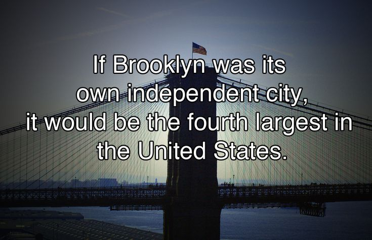 10 Fun Facts You Probably Never Knew About New York City