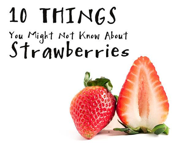 Top 28 Facts About Strawberries Interesting Facts