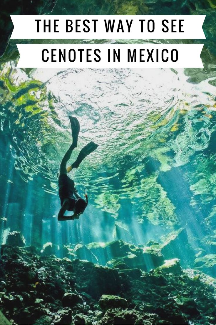 Swimming in Mexico's cenotes is a bucket list item you need to have!