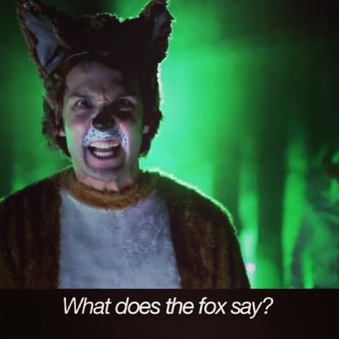what the fox say halloween light show video