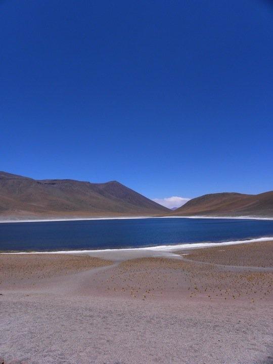 Lagunas Altiplanicas - Desierto de Atacama - Chile