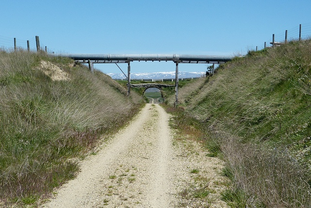 From the Otago Central Rail Trail, riding from near Auripo mostly downhill to Omakau.