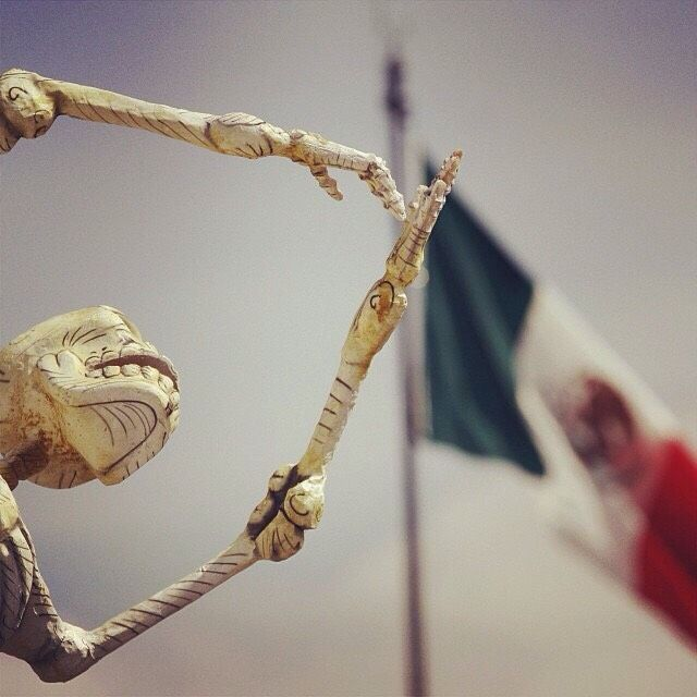 El Día de la Bandera de México se celebracada 24 de febrero.  Para celebrarlo recopilamos esta galería de imágenes que representan la riqueza y di