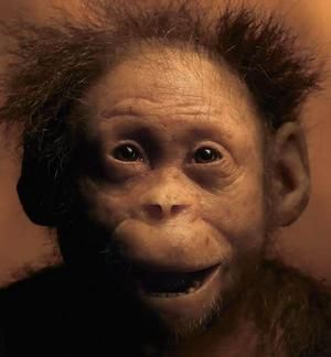 She is the most ancient child ever discovered and was no more than three years old when she died about 3.3 million years ago. Australopithecus afarensis, Ethiopia AKA Dikika child.