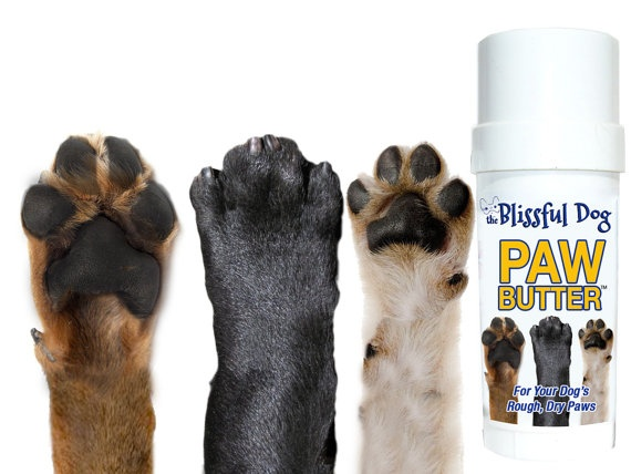 Paw Butter for Dry Rough Dog Paw Pads Twist up by TheBlissfulDog, $12.50
