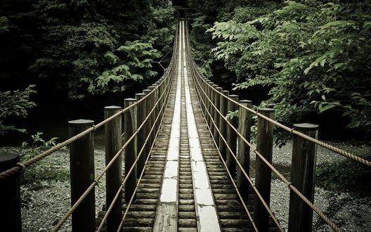 Обои Подвесной деревянный мост через лесную реку
