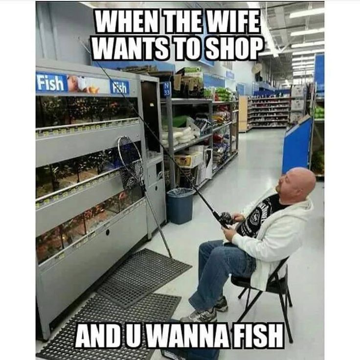 17 best images about funny fishing memes on pinterest for Types of fish at walmart