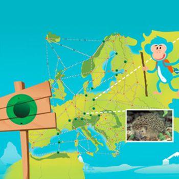 Muuvit ist ein kostenfreies Unterrichtsmittel für die Klassenstufe 1-6, bei dem die Kinder durch Bewegung auf einer virtuellen Reise vorwärts kommen.