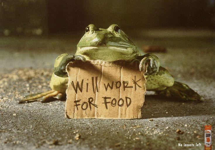 will work for food dm9 ddb - Căutare Google