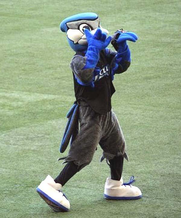 "Toronto Blue Jays mascot ""Ace"""