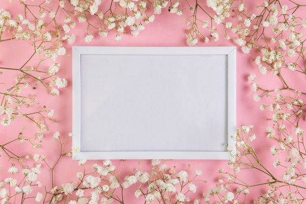 Download An Empty White Blank Frame Surrounded With White Baby S Breath Flowers Against Pink Background For Free In 2020 Pink Background Frame Geometric Background