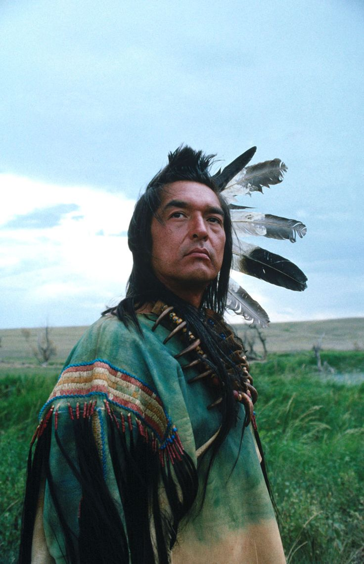 I'm a true Indian now: I finally saw Dances with Wolves