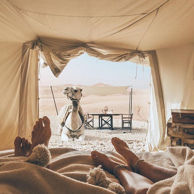 Hard to get any privacy these days - morning views from our tent @scarabeocamp