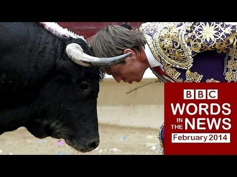 BBC Words in the News 14/02a with transcript video: UN: No bullfighting for kids; Man survives 16 months at sea; Facebook allows gender choices