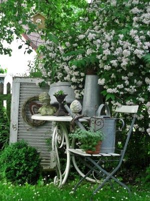The pewter color with the white in this little corner of the garden really works. Interesting combination of things.