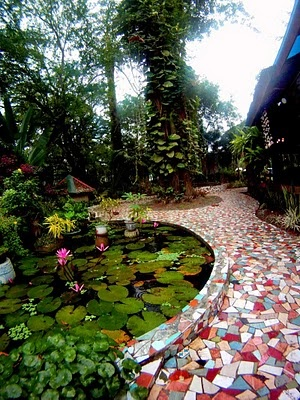 Gorgeous Lotus garden.