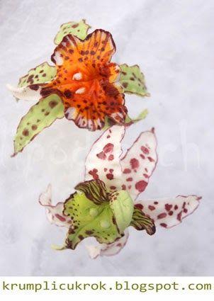 Ez egy másik fajta orchidea amit az eredeti fotója alapján készítettem.  Munka közben készültek fázis fotók. Azokat is felteszem hátha valak...