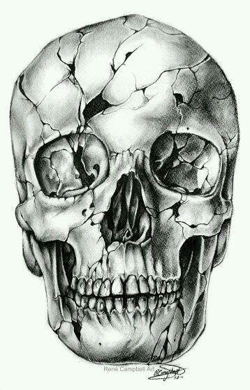 ~A Cracked Skull Illusion ~