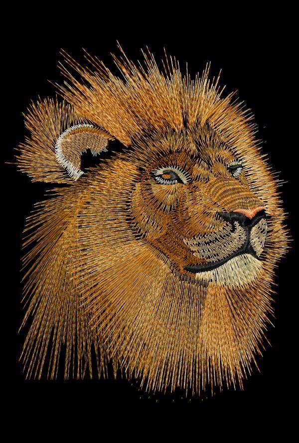 http://embirdtraining.com/wp-content/uploads/2010/10/phil-s-lion-line-art.jpg
