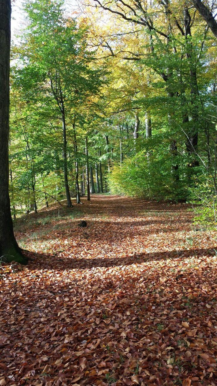 Ramlosa Park (Helsingborg, Sweden): Address, Reviews - TripAdvisor