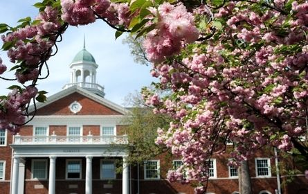 Elon University | Best College | US News North Carolina